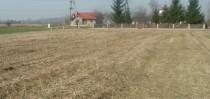 Dzialki - sell - Malinie - Frank�wka - wydane warunki zabudowy ,pe�ne media